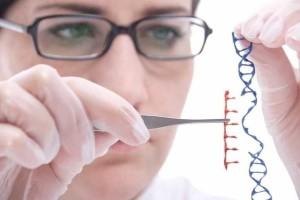 INVESTIGACIÓN GENETICA